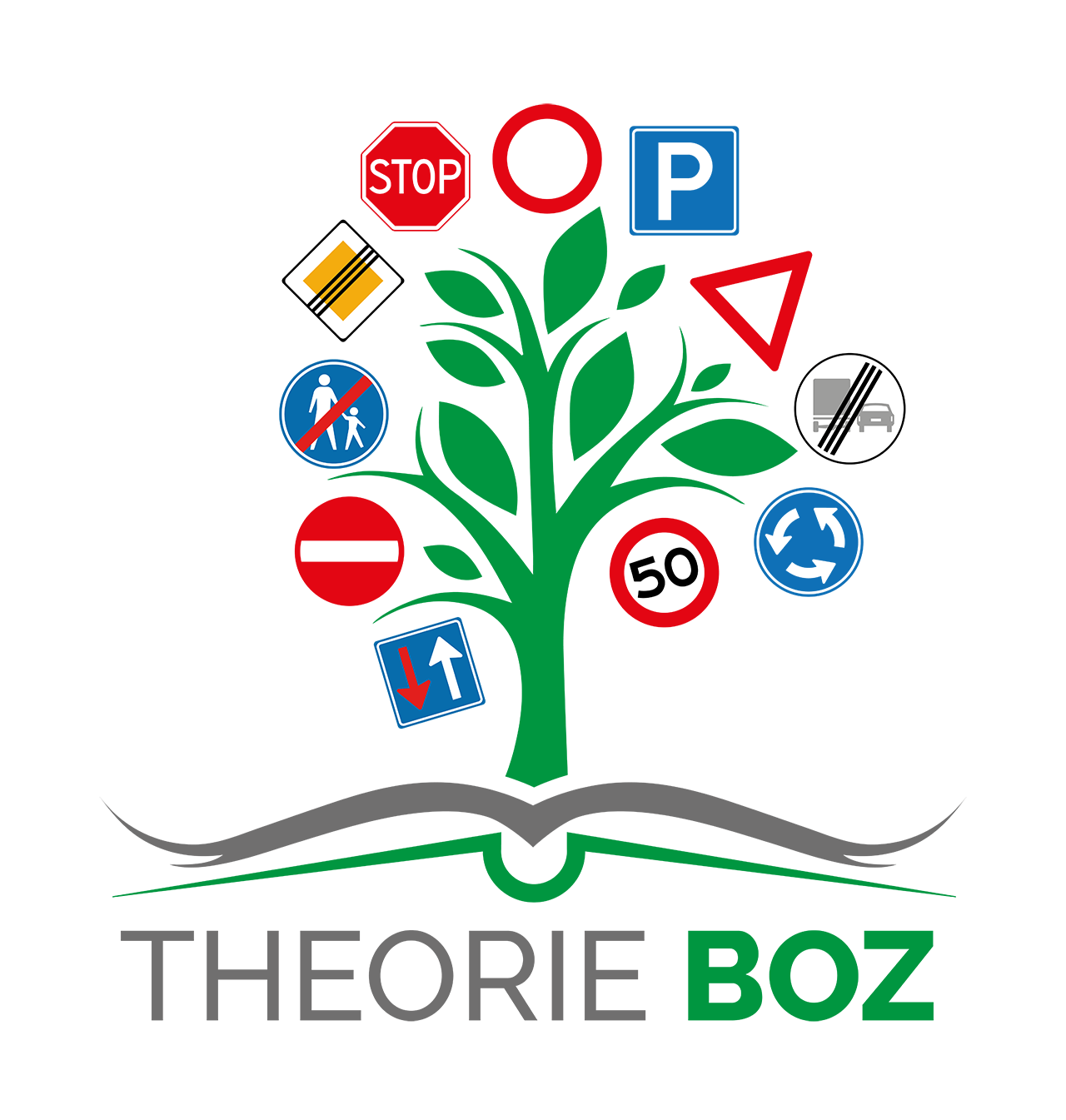 theorie boz